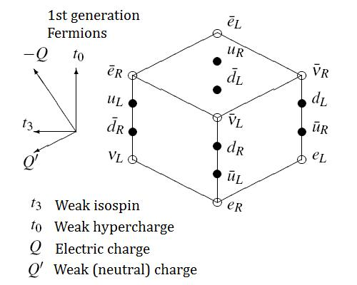 Fermions of 1st generation graphed according to weak hypercharge and isospin