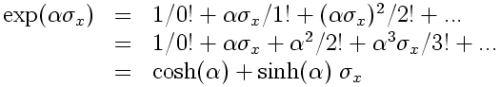 exponential of sigma_x becomes cosh and sinh sigma_x